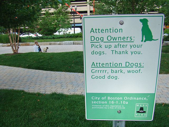 Dog Park domestic violence signs