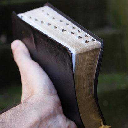 domestic violence religion bible
